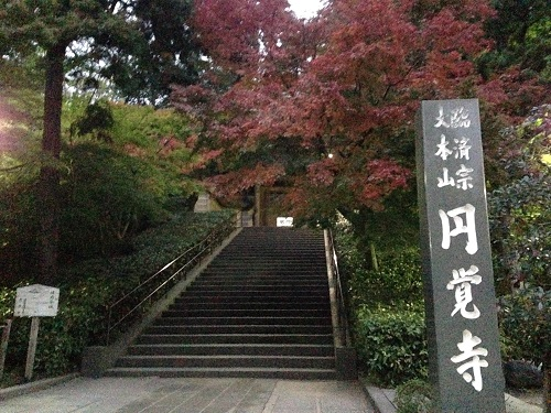 円覚寺 鎌倉 紅葉