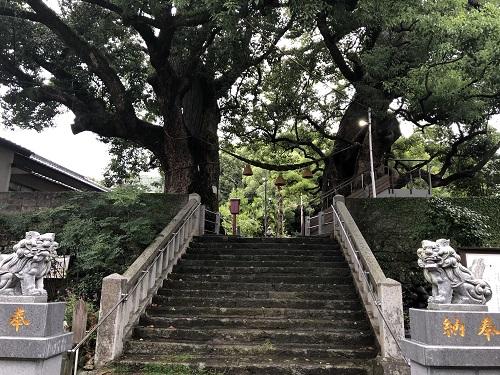 長崎 山王神社 被爆クスノキ